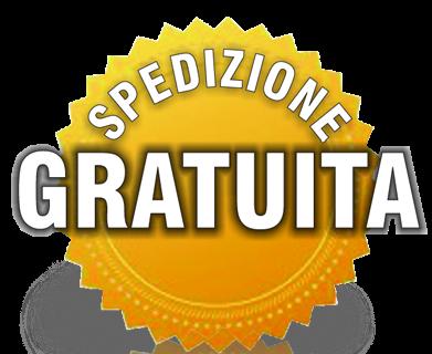 Logo_spedizione3