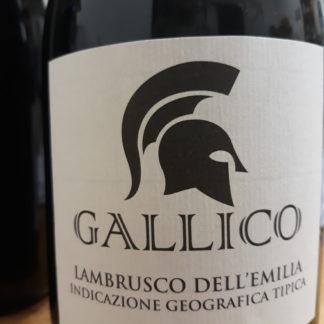 Vino Lambrusco Gallico